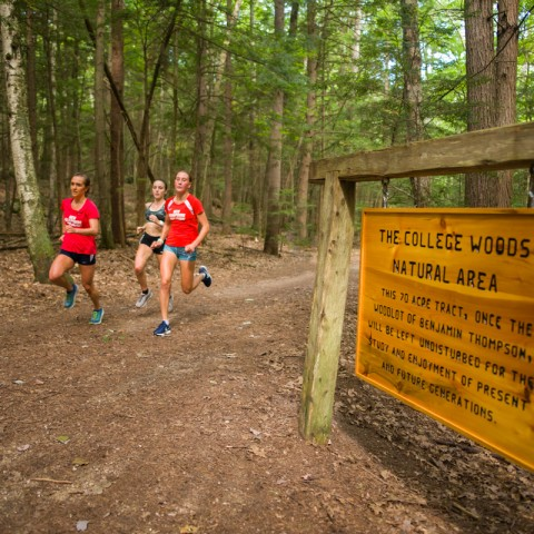 Runners in College Woods