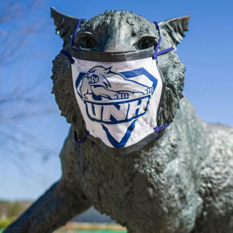 Wild E. Cat statue wearing a mask